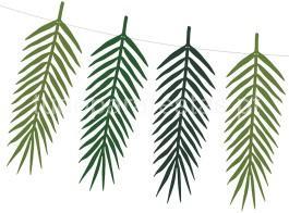 tropical bandeira folhas compridas3