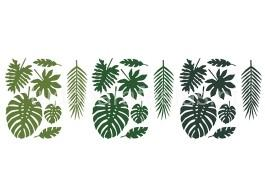 tropical folhas