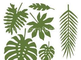 tropical folhas2
