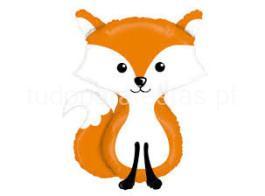 bosque balao raposa