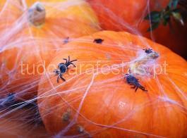 halloween aranhas 2