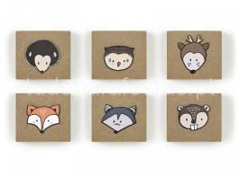 raposa caixas 2