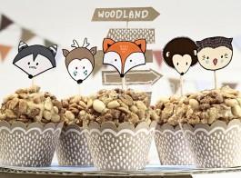raposa cupcake kit2