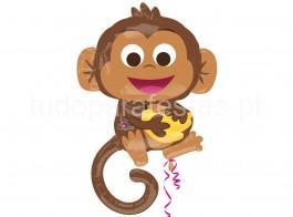 selva balao macaco