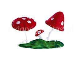 bosque cogumelos