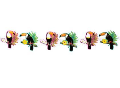 tropical tucano faixa